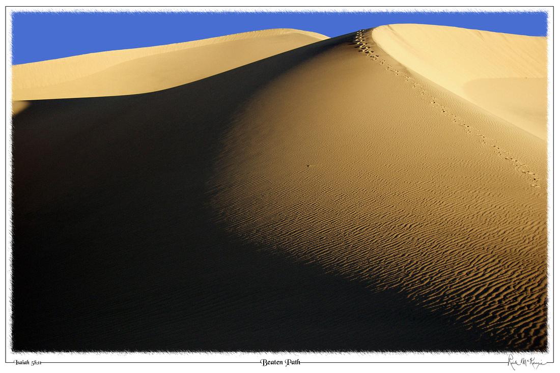 Beaten Path-Death Valley Natl Pk, CA