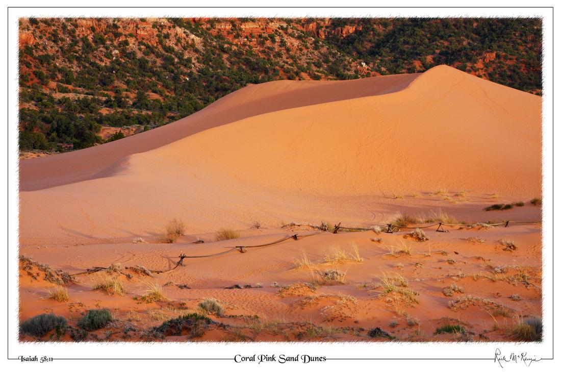Coral Pink Sand Dunes-State Pk, Kanab, UT