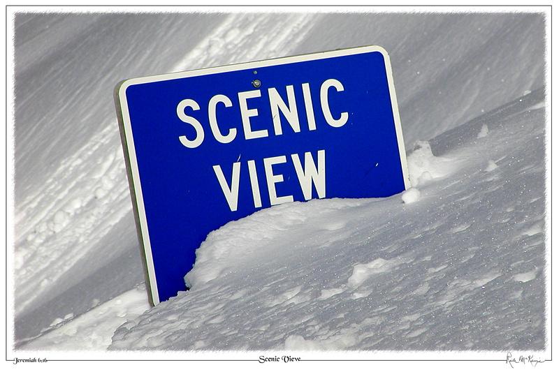 Scenic View-Mount Rainier National Park, WA