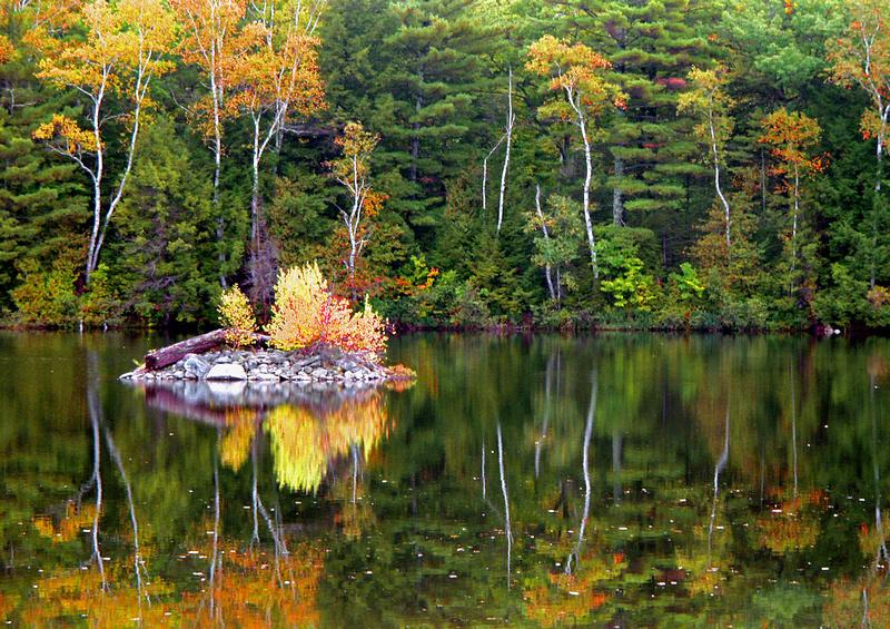 Androscoggin Autumn-Androscoggin River, ME