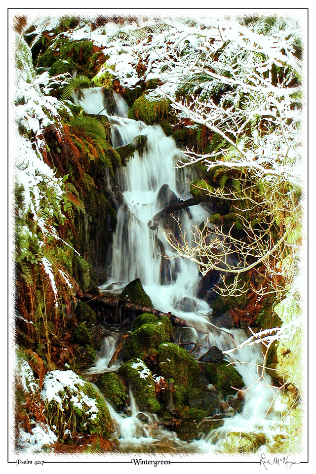 Wintergreen-Brewster Lake, North Bend, WA